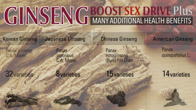 Ginseng Types, Numerous Uses and Various Health Benefits