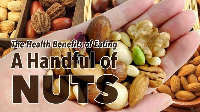 A Handful of Nuts For Longevity and Disease Prevention