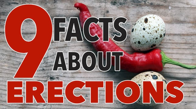 9 Facts About Male Erections You May Not Aware Of
