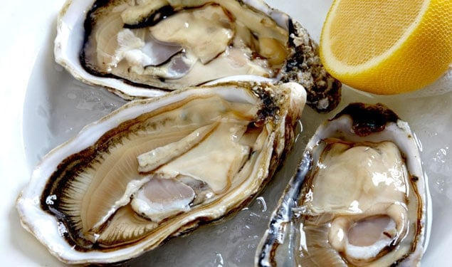 Does Oyster Increase Libido Sex Drive? Remedies for Men