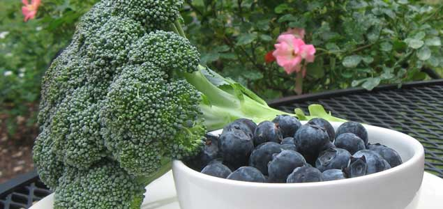 Superfoods Blueberries and Broccoli